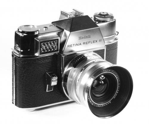 Retina et Curtagon 28mm.jpg
